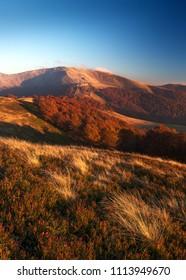 Autumn in Carpathians, Ukraine. Polonyna Krasna mountain range