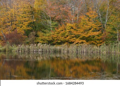 Autumn in the Catskill Mountains - Snake Pond near Andes NY