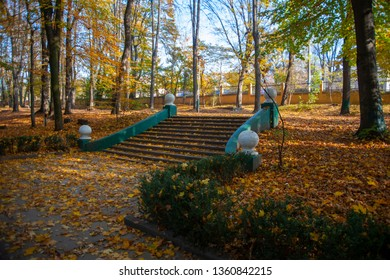 Autumn in the city. Old steps with a lot of the yellow leaves in the park. Green bushes with the yellow leaves.