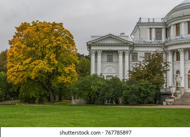 Autumn city park. Flying tree and ancient building