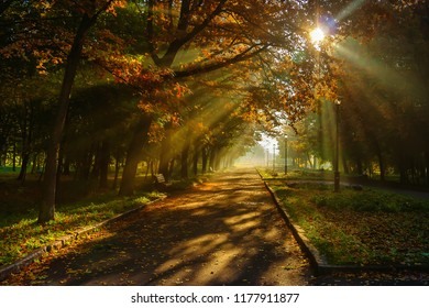 Autumn in the city park. The city of Khmelnitsky.
