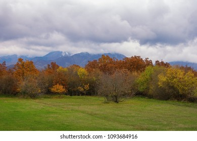 Autumn cloudy landscape with green field and colorful forest.  Bosnia and Herzegovina, Republika Srpska