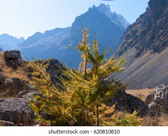 Autumn at the col d'arsine at la grave isere in france