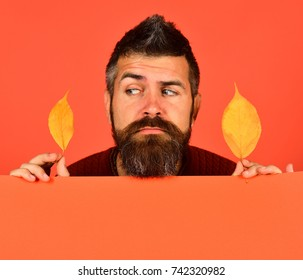 Autumn and cold weather concept. Hipster with beard and suspicious face plays with leaves. October and November time idea. Man holds yellow cherry tree leaves on peachy orange background, copy space