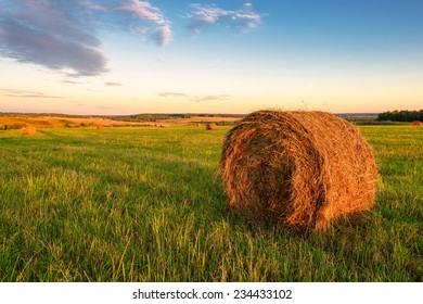 Autumn collecting hay in stacks