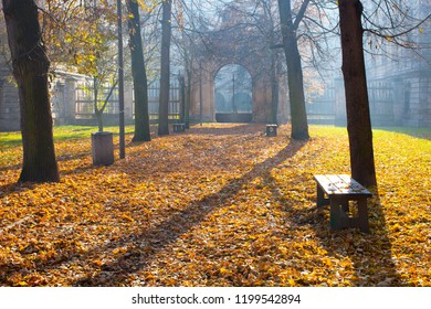 Autumn colonade with a gateway and yellow blades