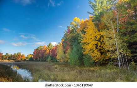 Autumn color against blue sky and creek