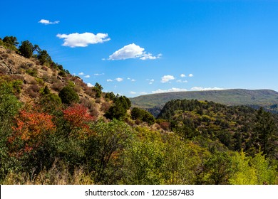 Autumn color along the road to the Gunnison River at Black Canyon of the Gunnison National Park