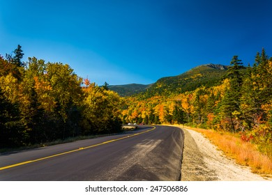 Autumn color along a road in White Mountain National Forest, New Hampshire.