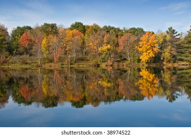 Autumn Color Leaves on Lake