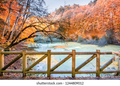 Autumn color of pond at Yedigoller Nature park located in Bolu,Turkey with wooden handrails bridge on foreground.Autumn concept