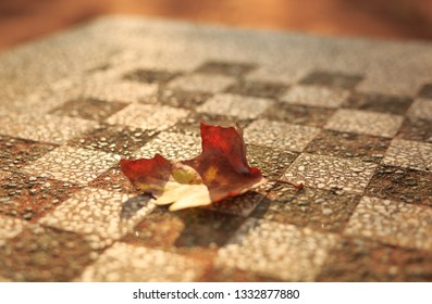 An autumn colored leave on a chess board in a perk. Lyon, France. Shallow D.O.F.