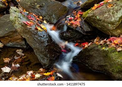 Autumn colored leavesamongg rocks in a small creek near Peacham, VT