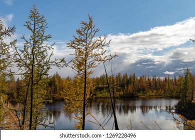 Autumn colored siberian forest with reflections on the lake surface, September 6, 2018, Norilsk