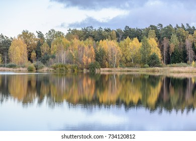 autumn colored trees on the shore of lake with reflections in water with white clouds above. wide angle landscape