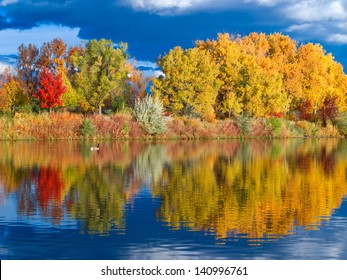 Autumn Colored trees reflecting in a lake.