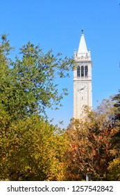 Autumn colored trees in the UC Berkeley campus; Sather Tower (Campanile) in the background