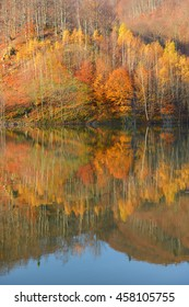 Autumn colorful foliage over lake with beautiful forest in red and yellow color.