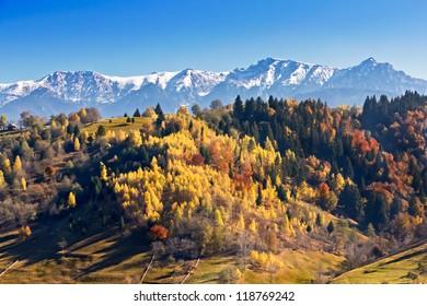 Autumn colorful landscape in Moieciu