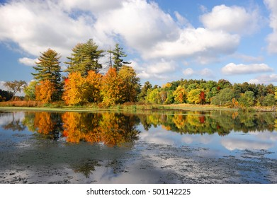 autumn colorful trees reflecting in tranquil lake under sky