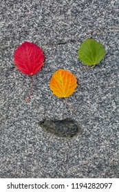 Autumn Colorful Wood Leaves. Red, yellow and green. The background is gray stone. The leaves are set so that they form a smiling face.