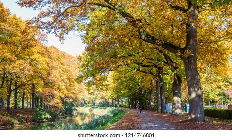 Autumn colors along the  Apeldoornse channel near Eerbeek in Gelderland, Netherlands