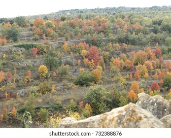 Autumn colors in Cinctorres, Castellon, Maestrazgo, Spain