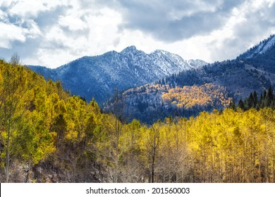 Autumn colors and early snow in the Wasatch National Forest by Brighton Utah USA./ The Spot on the Mountain