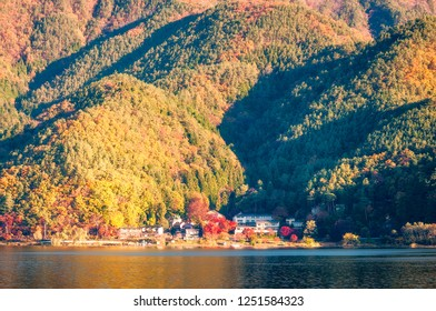 Autumn colors at Fujikawaguchiko - a Japanese resort town in the northern foothills of Mount Fuji. It surrounds Lake Kawaguchi, one of the scenic Fuji Five Lakes in Japan.