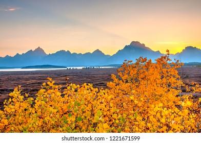 Autumn Colors in Grand Teton, Wyoming, America