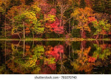 Autumn colors at a lake in Shireteko Five lakes park, Hokkaido, Japan