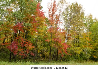 Autumn colors in Minnesota