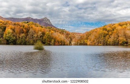 Autumn Colors in the Montseny Natural Park, Catalonia