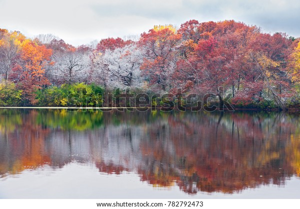autumn colors on frosty trees and reflections on pond in marthaler park of west saint paul minnesota