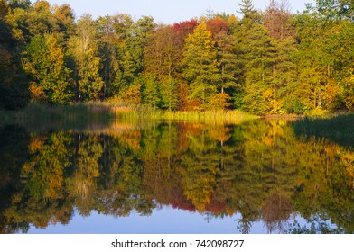 Autumn colors on the lake. Moszna Poland