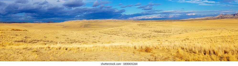 autumn colors on rural grasslands, Colorado, United States, panoramic view