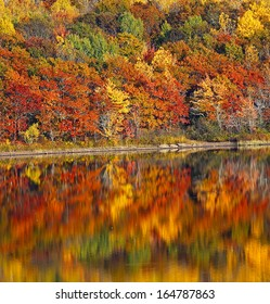 Autumn colors on the Washademoak at Codys, Cambridge-Narrows, Coles Island, Queens County, New Brunswick, Canada.