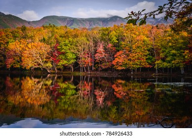 The autumn colors reflected in a lake at Shiretoko, Hokkaido, Japan