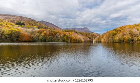 Autumn Colors in Santa Fe Reservoir, Montseny Natural Park, Catalonia
