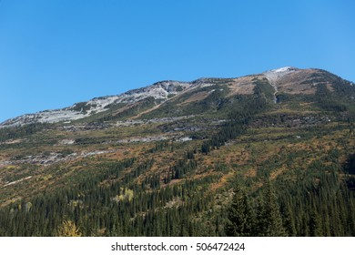 Autumn colors starting to appear in the Selkirk Mountains near Rogers Pass, British Columbia, Canada