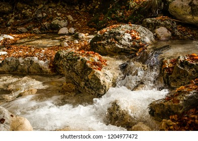 Autumn colors.  A torrent flows impetuously between rocks covered with autumn leaves of various colors.