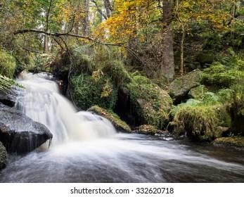 Autumn colours in the British Peak District