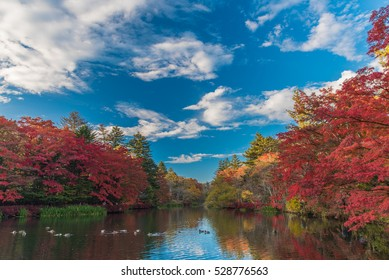 Autumn colours of Kumoba  pond,Karuizawa,Japan