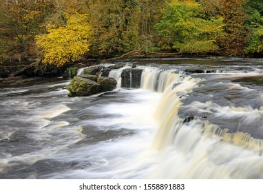 Autumn colours on display at Aysgarth Upper Falls, Yorkshire Dales
