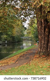Autumn colours on the river Thames in England