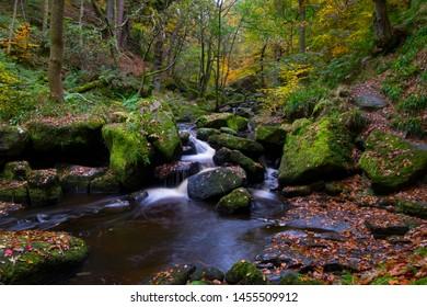 Autumn colours at Padley Gorge, Peak District, Derbyshire, UK