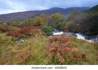 Autumn Colours,mountains and stream in The Black Valley, Co.Kerry, Ireland