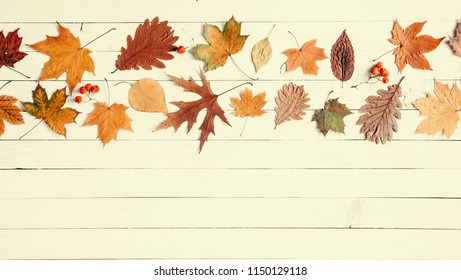 Autumn composition. Border made of  dried leaves on pastel yellow wooden background. Autumn flat background. Flat lay, top view, copy space