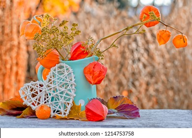 autumn-composition-cape-gooseberry-brigh