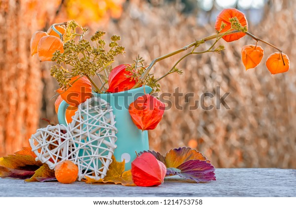 autumn-composition-cape-gooseberry-brigh